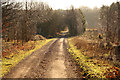SK6069 : Route 6 through Sherwood Forest by Richard Croft