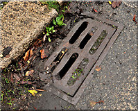 "J3673 : ""Patent"" grating cover, Belfast by Albert Bridge"