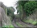 ST5963 : Byway, Stanton Drew by Maigheach-gheal