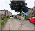 ST5963 : Church Farm by Jonathan Kington