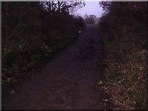 TQ1562 : New Road, Oxshott by David Howard