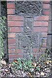 SX9193 : Benchmark on wall of Cowley Bridge Road by Roger Templeman