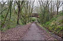 SS9712 : Tiverton : The Old Railway Line by Lewis Clarke