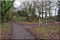 SS9712 : Tiverton : Old Railway Line by Lewis Clarke