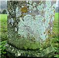 SY5889 : Benchmark on gatepost by Jonathan Kington
