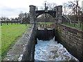 SJ6470 : Vale Royal locks - sluice by Stephen Craven