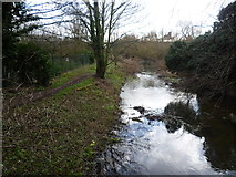 TQ5571 : River Darent near Hawley by Marathon