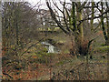 SJ8393 : Hough End Clough, Red Lion Brook by David Dixon