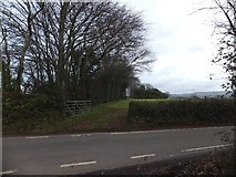 ST0007 : Hedge and field gate at the crest of Little Toms by David Smith