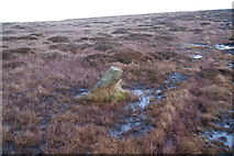 SD9834 : Boundary stone on Dick Delf Hill by Bill Boaden