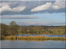 SE7170 : Man-made lakes, Castle Howard by Pauline E