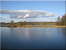 SE7170 : Lake view by Pauline E