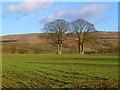 NY6040 : Farmland, Glassonby by Andrew Smith