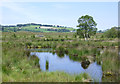 SN6862 : Pools on Cors Caron in July, Ceredigion by Roger  Kidd