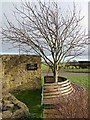 NZ1185 : Memorial bench and tree at the Dyke Neuk pub by Oliver Dixon