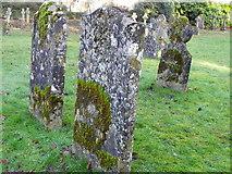 ST9929 : Gravestones, St George's Churchyard by Maigheach-gheal