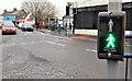 "C8532 : ""PUFFIN"" crossing, Coleraine (2) by Albert Bridge"