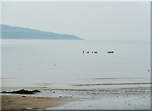 NX6548 : The wreck of the Monreith, Nun Mill Bay seen on a misty day by Ann Cook