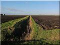 TL6691 : Ditch off Black Drove by Hugh Venables