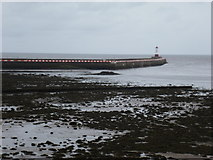 NU0052 : Berwick-upon-Tweed: red and white pier by Chris Downer