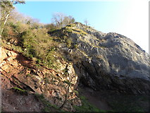 ST5673 : Rocks in the Avon Gorge by Colin Bews
