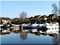 SJ7588 : Bridgewater Canal, Marina at Oldfield Brow by David Dixon