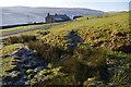 SD9498 : Farm above Gunnerside by Ian Taylor