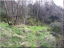 SE0023 : Paths at Bull Fall, Cragg Vale by Humphrey Bolton