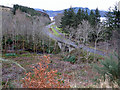 NG8027 : The A87 from Lochalsh Woodland Park by Richard Dorrell