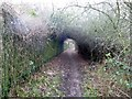 SK3399 : Footpath beside Carr Road by Graham Hogg