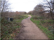 TQ3187 : The Parkland Walk, looking north by Dr Neil Clifton