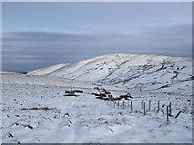 NN8704 : View across Glen Anny by William Starkey