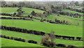 J4465 : Drumlin fields near Ballygowan by Albert Bridge