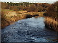 SY8487 : River Frome from Wool Bridge by Colin Smith