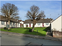 ST5393 : Sheltered Housing, Hardwick Avenue, Chepstow Garden City by Ruth Sharville