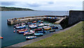 SW7818 : Coverack Harbour Lizard by Peter Skynner