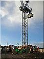SX9064 : Development site, Barton Road, Torre by Richard Dorrell