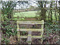 SP3533 : Double stile by Michael Dibb