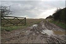 TF2684 : Muddy Track, near Withcall by J.Hannan-Briggs