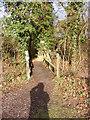 TM2751 : Footbridge on farm path at Foxborough Farm by Adrian Cable