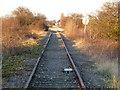TF4200 : Rusting rails on The Bramley Line by Richard Humphrey