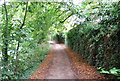 TQ7556 : Medway Valley Walk by N Chadwick