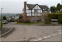 ST5192 : Orchid Meadow, Pwllmeyric by Jaggery