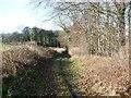 SE4706 : Watchley Lane by Christine Johnstone