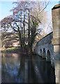SU2596 : Bridge, The Lake, Buscot Park by Vieve Forward