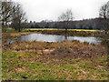 SD6608 : Pond in Regent Park by David Dixon