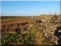NS3662 : Dry Stone Wall by wfmillar