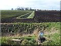 TF2400 : Farmland west of Willow Hall Lane by Richard Humphrey
