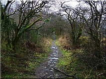 NS4175 : Former course of Barnhill Road by Lairich Rig