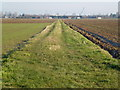 TF4722 : Grass track over the Allotment Gardens, Sutton Bridge by Richard Humphrey